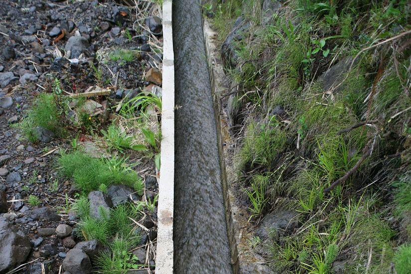 Recuperación del sistema de canales, Madeira